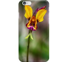 Donkey Orchid iPhone Case/Skin