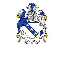 Coat of arms (family crest) for last-name or surname Cookesey . Heraldry banner for your name. Photographic Print