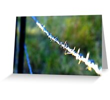 Barb wire - great for test focusing your macro Greeting Card