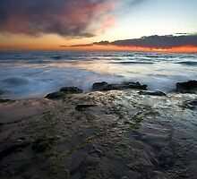 Laguna Coast by Doug Dailey