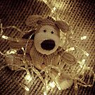 Boofle has gotten into a bit of a tangle by fotozo