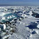 Breaking Ice by © Loree McComb