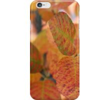 ORANGE LEAFS iPhone Case/Skin