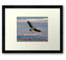 Sunrise Hunt  Framed Print