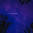 ISS seen from earth by Delfino