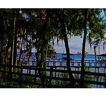 St Johns River Photographic Print