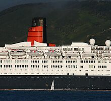 Goodbye QE2 by Mike Warman