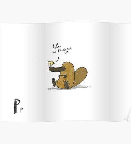 """Hello Mr Platypus"" Poster"