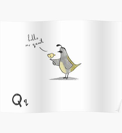 """Hello Mr Quail"" Poster"
