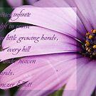 Daisies infinite Uplift in praise... by michellerena