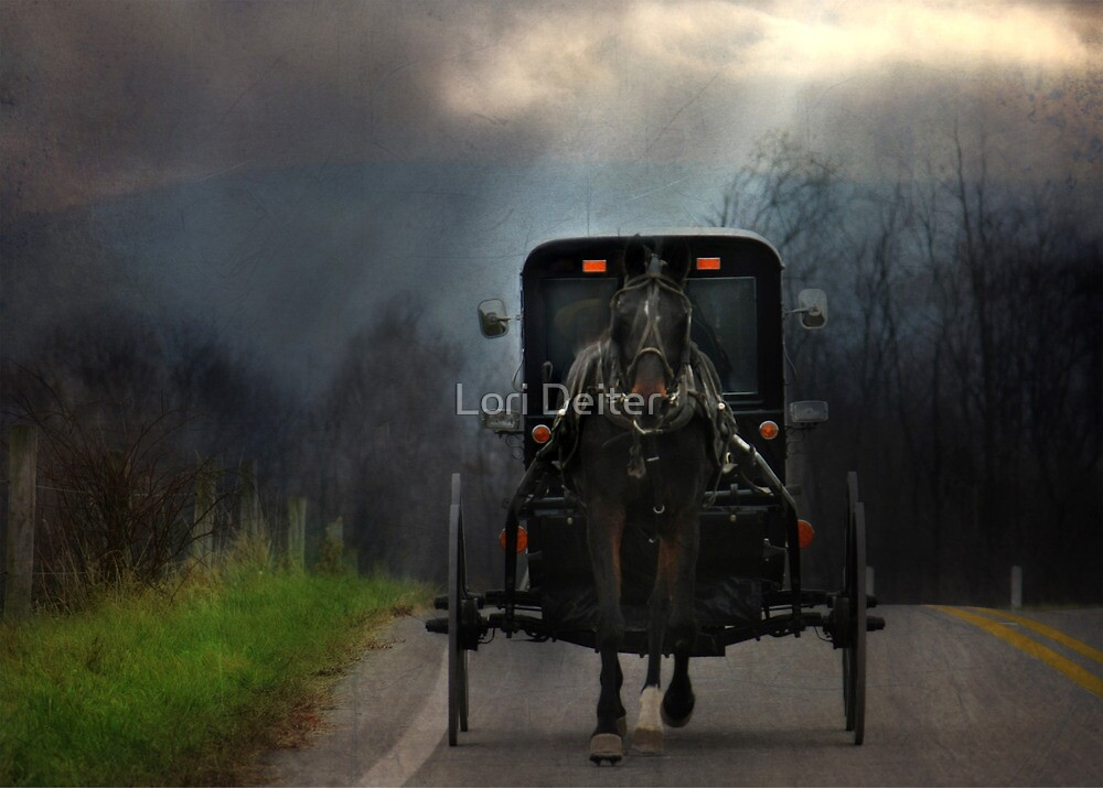 The Road Less Traveled by Lori Deiter