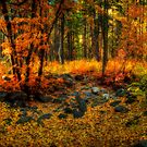 Fall Fantasy  by Saija  Lehtonen