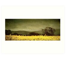 A splendid crop Art Print