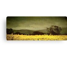 A splendid crop Canvas Print