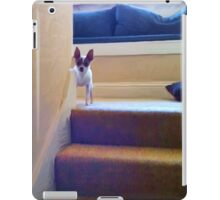"""Busted"" (Portrait Format) iPad Case/Skin"