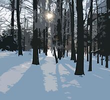 Winter afternoon by FrauleinimStall