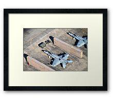 Hornet Dens Framed Print