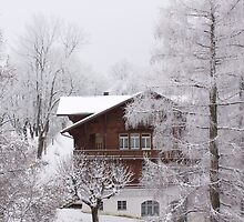 Christmas Chalet by awiseman