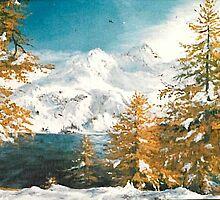 Winter in Austria by Sorin Apostolescu