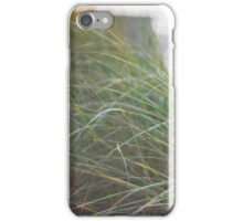 Sunset Through Beach Grass iPhone Case/Skin