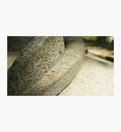 Stone Eleven Photographic Print
