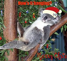 Dont Wake Me christmas morning by Carol Field