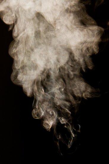 Steam by Darrick Bartholomew