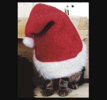 Santa 4 Paws by Ladymoose