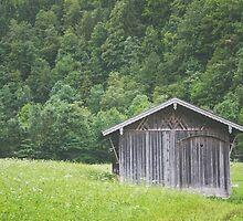 Alpine Love by Bethany Helzer