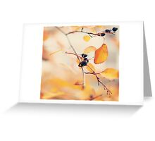 yellow notes  Greeting Card