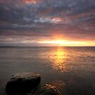 Sun on the Rocks by Stephen Gregory