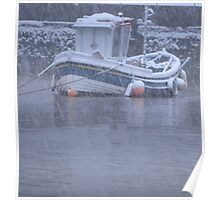 Seaton Rose in a Snow Storm Poster