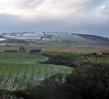 Snow Just Blowing in Over Boulby Cliff by Sue Nichol