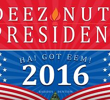 DEEZ NUTS for PRESIDENT by slr81