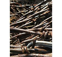 Barbed Wire - McCook, Nebraska Photographic Print