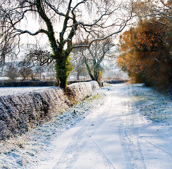 Winter on a country road by Sheila Laurens