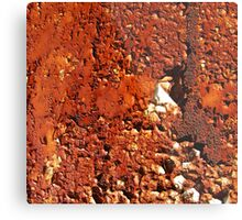 A New Year's resolution? Metal Print