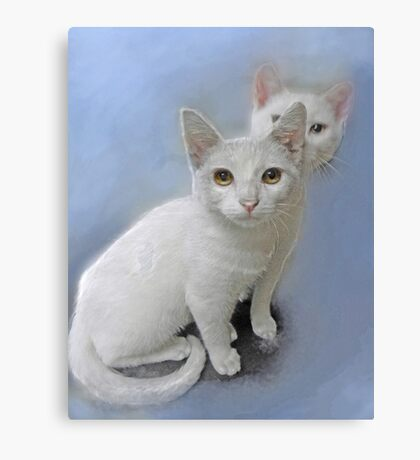 white kittens Canvas Print
