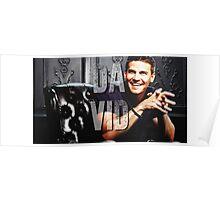 Dvid Boreanaz Poster