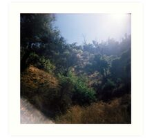Light in the Valley, Griffith Park, August 14 2010 Art Print