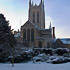 St Edmunds cathedral by DaleReynolds