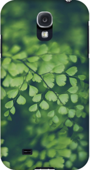 Maidenhair Fern by Bethany Helzer