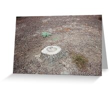 Stump by Kenneth Greeting Card