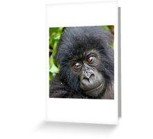 J U V E N I L E Greeting Card