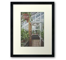 Through the Greenhouse Framed Print