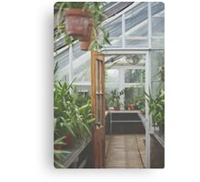 Through the Greenhouse Canvas Print
