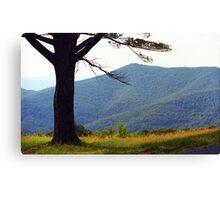 Blue Ridge Mountains, Virginia Canvas Print
