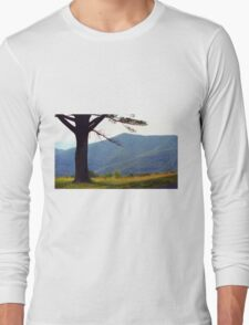 Blue Ridge Mountains, Virginia Long Sleeve T-Shirt