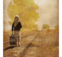 Chasing Dreams by Nikella