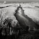 Winterwonderland by Farfarm